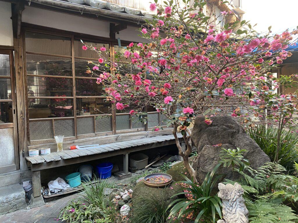奥座敷の前は日本庭園